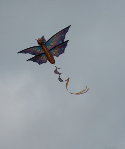Kite - White Rock (Pam Bustin 2008)