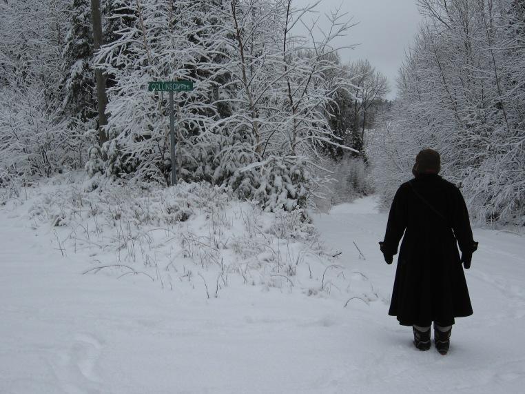 Snowy Walk 2012