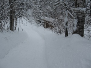 ..our drive way...