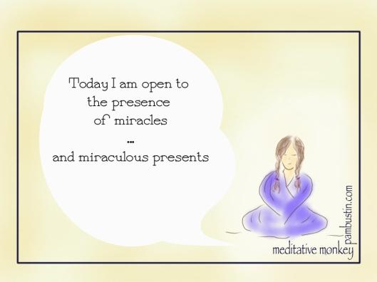 Meditative Monkey - Miracles 1